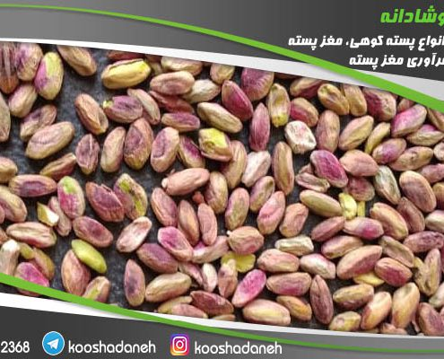 خرید اینترنتی مغز پسته ارزان اکبری از مرکز خرید پسته