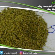 خرید مستقیم پودر پسته صادراتی