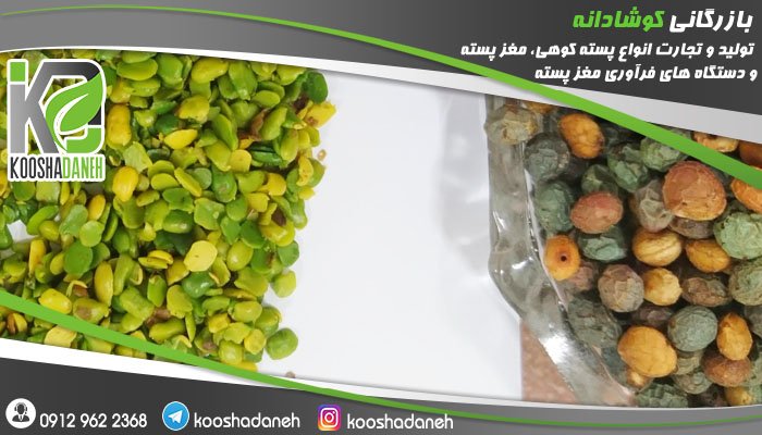 شرکت پخش بنه شیرازی