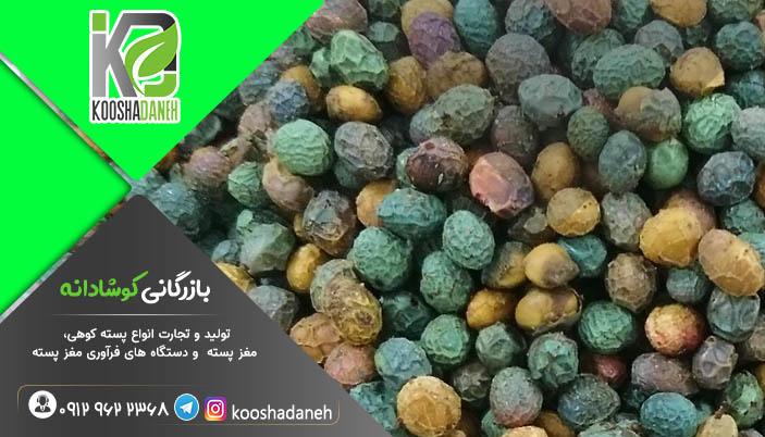 بهترین پسته کوهی افغانستان