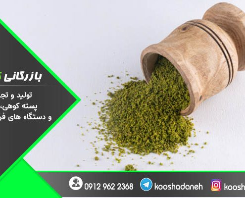 خرید پودر پسته کرمانی ۱۰۰ گرمی