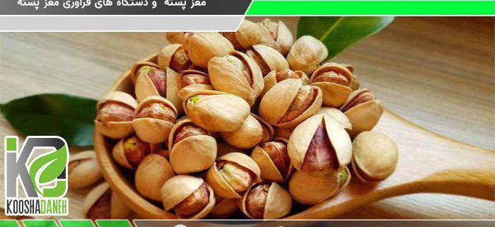 عمده فروشی مغز پسته فندقی کرمان