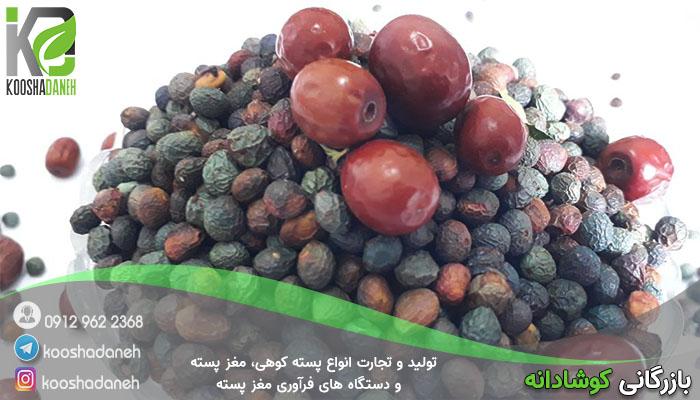 دلایل محبوبیت پسته کوهی شیراز