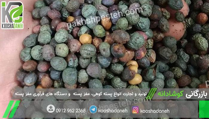 مرکز توزیع پسته کوهی شیراز