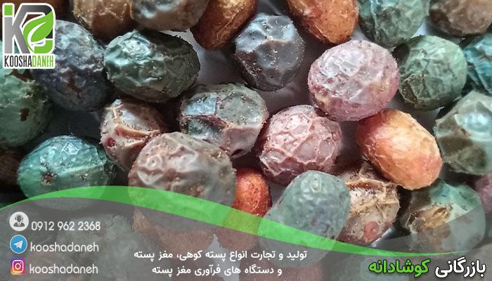 انواع مختلف پسته کوهی افغانستان