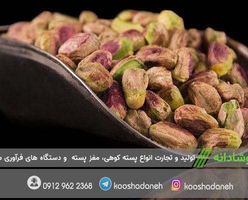بازار صادرات مغز پسته کرمان