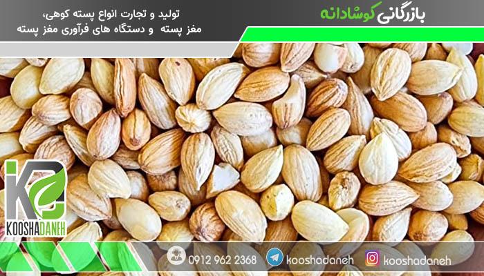 فروش ویژه بذر محلب